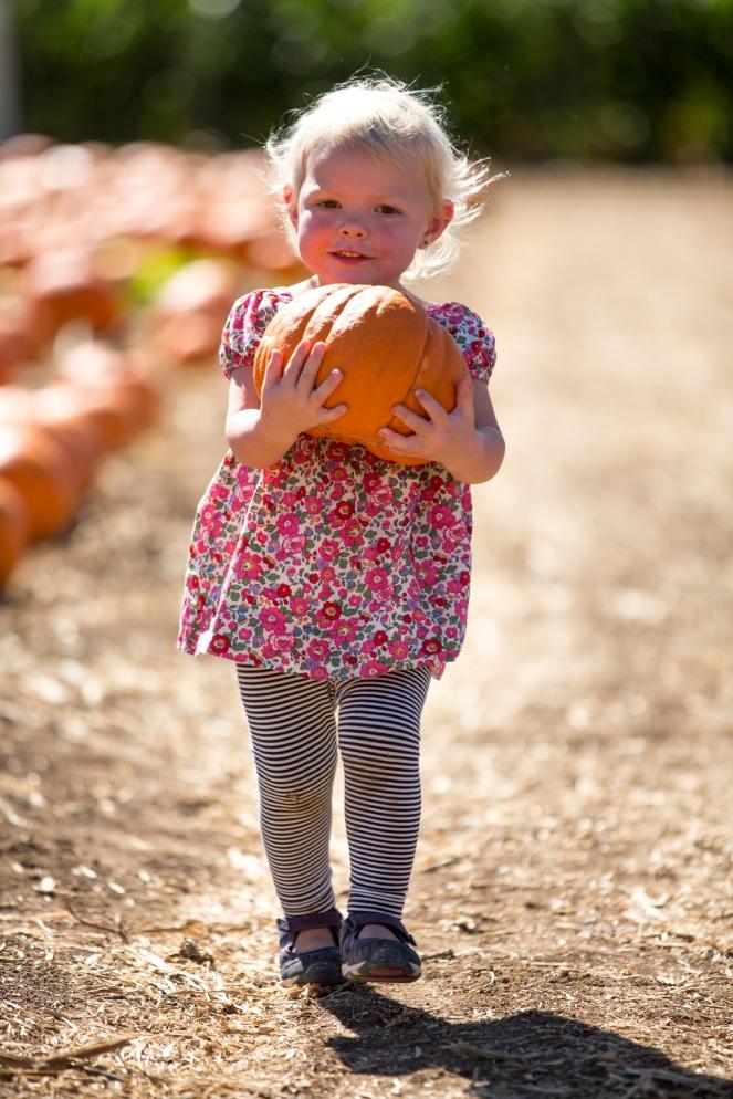 fall2016_pumpkinpatch-11