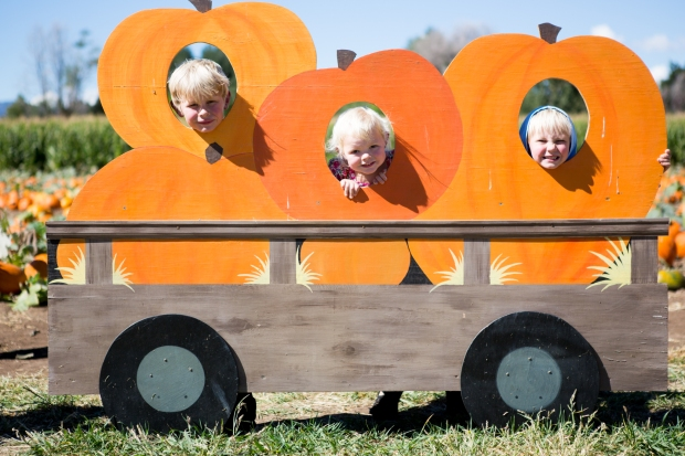 fall2016_pumpkinpatch-14